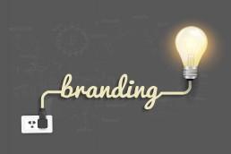 Branding Portfolio